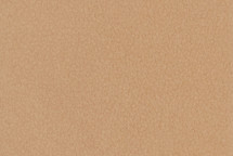Leather Tahoe Cork