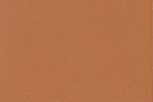 Leather Tahoe Tan
