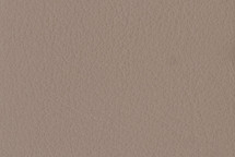 Leather Tahoe Taupe
