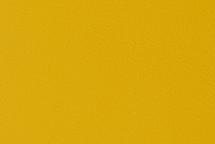 Leather Tahoe Yellow