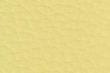 Leather Atlantic Canary