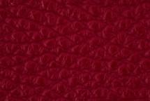 Leather Atlantic Cranberry
