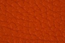 Leather Atlantic Exuberance