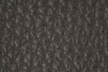 Leather Atlantic Fog