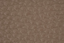 Leather Atlantic Fossil