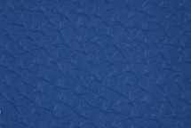 Leather Atlantic Gentian