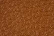 Leather Atlantic Lion