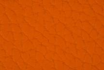 Leather Atlantic Marigold