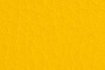 Leather Atlantic Pollen