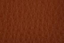 Leather Atlantic Woody