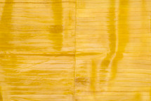 Eel Skin Panel Glazed Yellow
