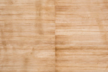 Eel Skin Panel Glazed Light Beige