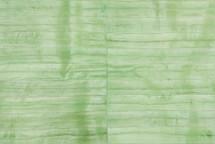 Eel Skin Panel Glazed Pistacchio