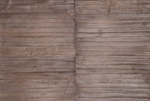 Eel Skin Panel Glazed Sepia