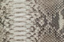 Python Skin Diamond BCUB Matte Grey