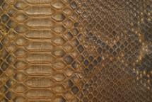 Python Skin Diamond BCUB Matte Gold