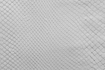 Python Skin Diamond FCBL Matte White