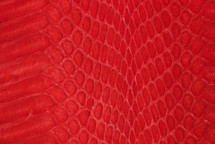 Whipsnake Skin Glazed Red
