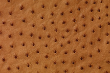 Ostrich Skin Matte Cognac