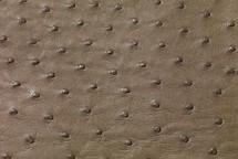 Ostrich Skin Matte Mink