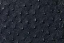 Ostrich Skin Garment Navy