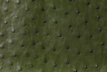 Ostrich Skin Matte Forest