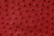 Ostrich Skin Matte Flame Red