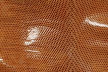 Lizard Skin Nile FCBL Lucido Hazelnut