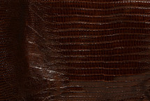 Lizard Skin Teju BCBL Lucido Brown