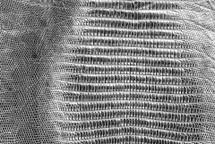 Lizard Skin Teju BCBL Metallic Old Silver