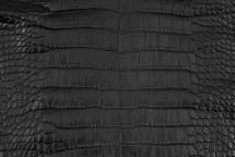 Alligator Skin Belly Matte Black 25/29 cm Grade 3