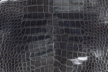 Alligator Skin Belly Glazed Anthracite 50/54 cm Grade 4