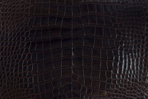Alligator Skin Belly Glazed Espresso 30/34 cm Grade 2