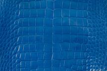 Alligator Skin Belly Glazed Cobalt 40/44 cm Grade 3