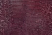 Alligator Skin Belly Glazed Bordeaux 45/49 cm Grade 3