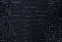 Alligator Skin Belly Matte Black 40/44 cm Grade 3