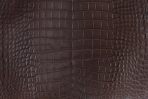 Alligator Skin Belly Matte Brown 30/34 cm Grade 4