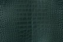 Alligator Skin Belly Matte Forest 35/39 cm Grade 3