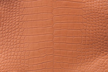 Alligator Skin Belly Matte Honey 35/39 cm Grade 4