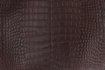 Alligator Skin Belly Matte Brown 40/44 cm Grade 3