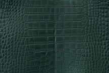 Alligator Skin Belly Matte Forest 40/44 cm Grade 4