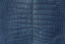 Alligator Skin Belly Matte Marine 40/44 cm Grade 4