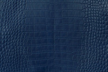 Alligator Skin Belly Matte Navy 40/44 cm Grade 3