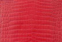 Alligator Skin Belly Matte Red 40/44 cm Grade 4
