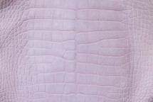 Alligator Skin Belly Matte Lilac 45/49 cm Grade 4