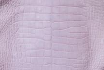 Alligator Skin Belly Matte Lilac 45/49 cm Grade 4