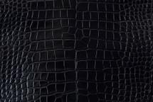 Alligator Skin Belly Millenium Black 35/39 cm Grade 4
