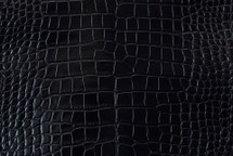Alligator Skin Belly Millenium Black 40/44 cm Grade 4