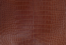 Alligator Skin Belly Millenium Cognac 30/34 cm Grade 4