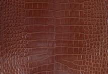 Alligator Skin Belly Millenium Cognac 30/34 cm Grade 4